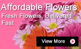 Best Value Flowers