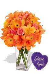 Claire Loves In Bloom